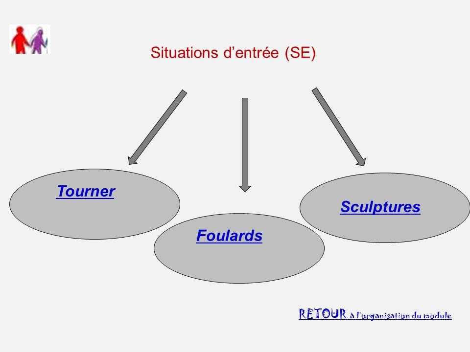 Situations d'entrée (SE) RETOUR à l'organisation du module Sculptures Tourner Foulards