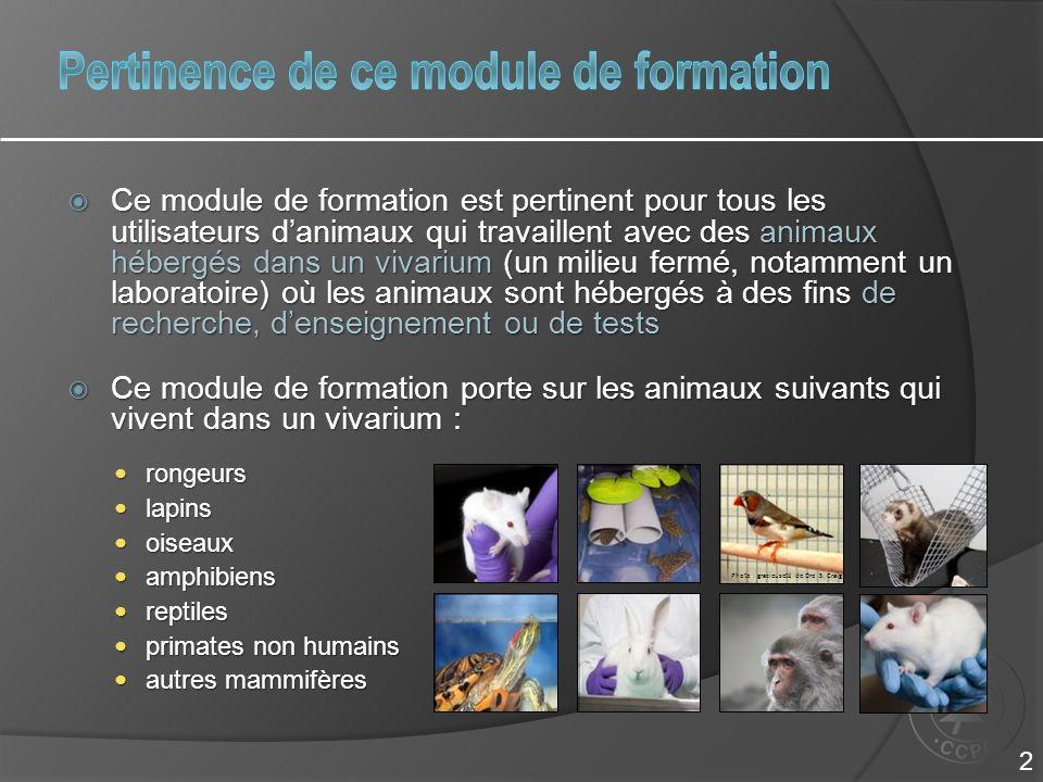  Ce module de formation est pertinent pour tous les utilisateurs d'animaux qui travaillent avec des animaux hébergés dans un vivarium (un milieu ferm