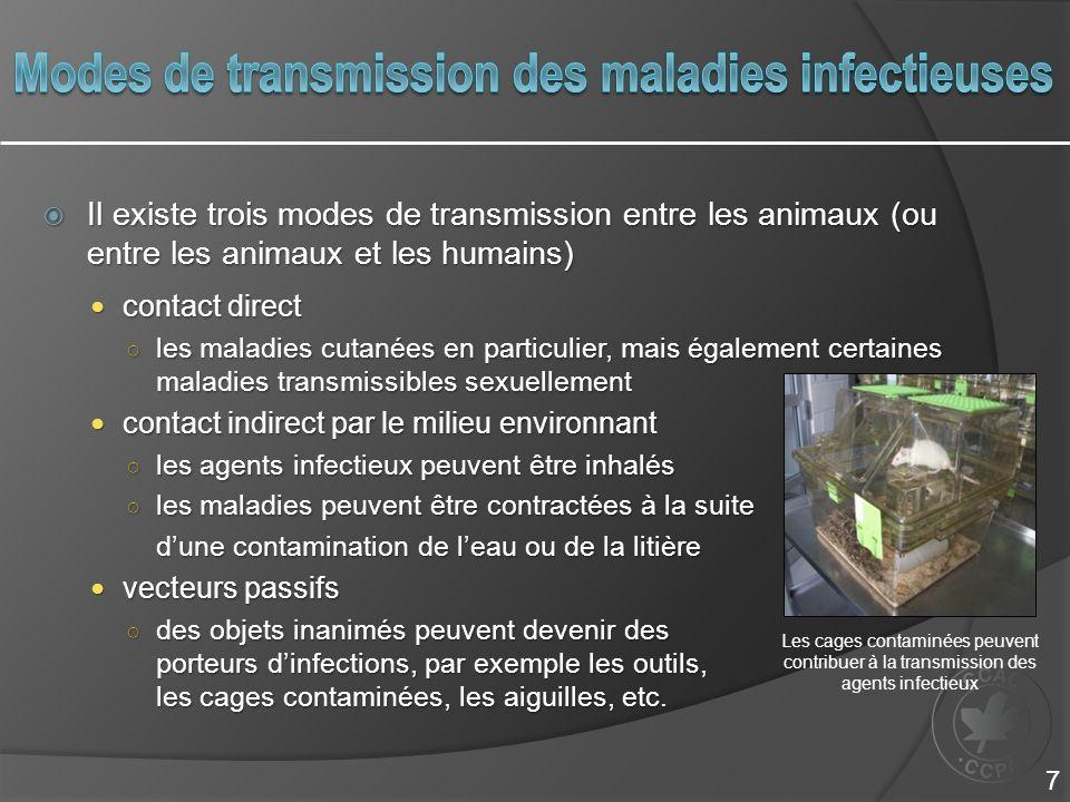  Il existe trois modes de transmission entre les animaux (ou entre les animaux et les humains) contact direct contact direct ○ les maladies cutanées