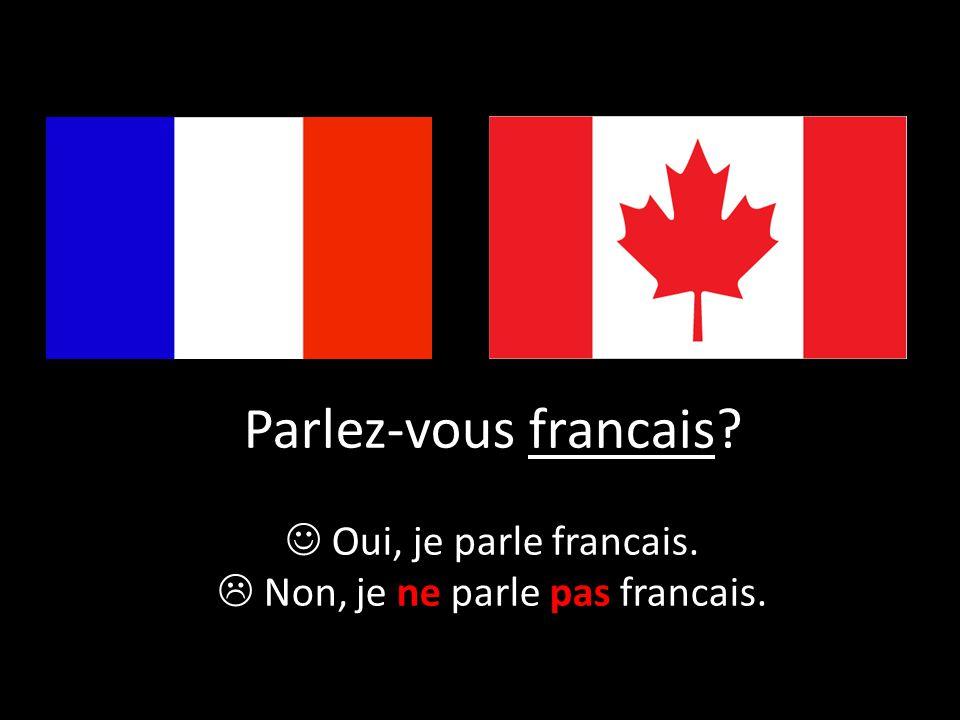 Parlez-vous francais? Oui, je parle francais.  Non, je ne parle pas francais.