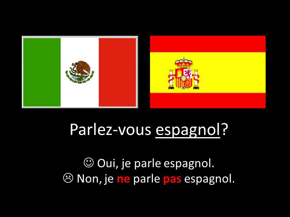 Parlez-vous espagnol? Oui, je parle espagnol.  Non, je ne parle pas espagnol.