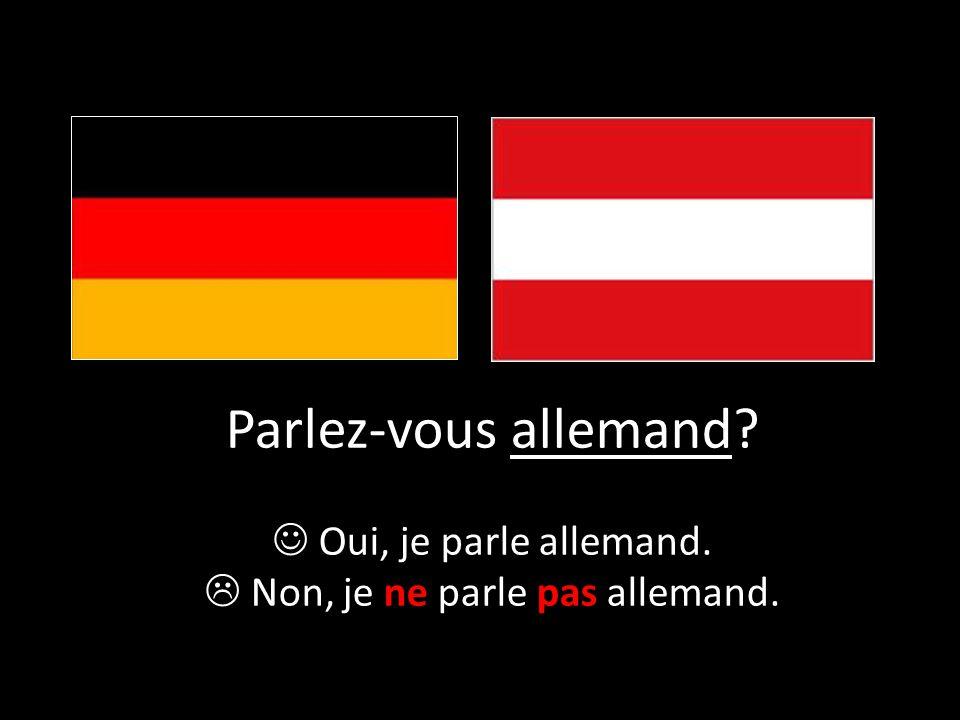 Parlez-vous allemand? Oui, je parle allemand.  Non, je ne parle pas allemand.