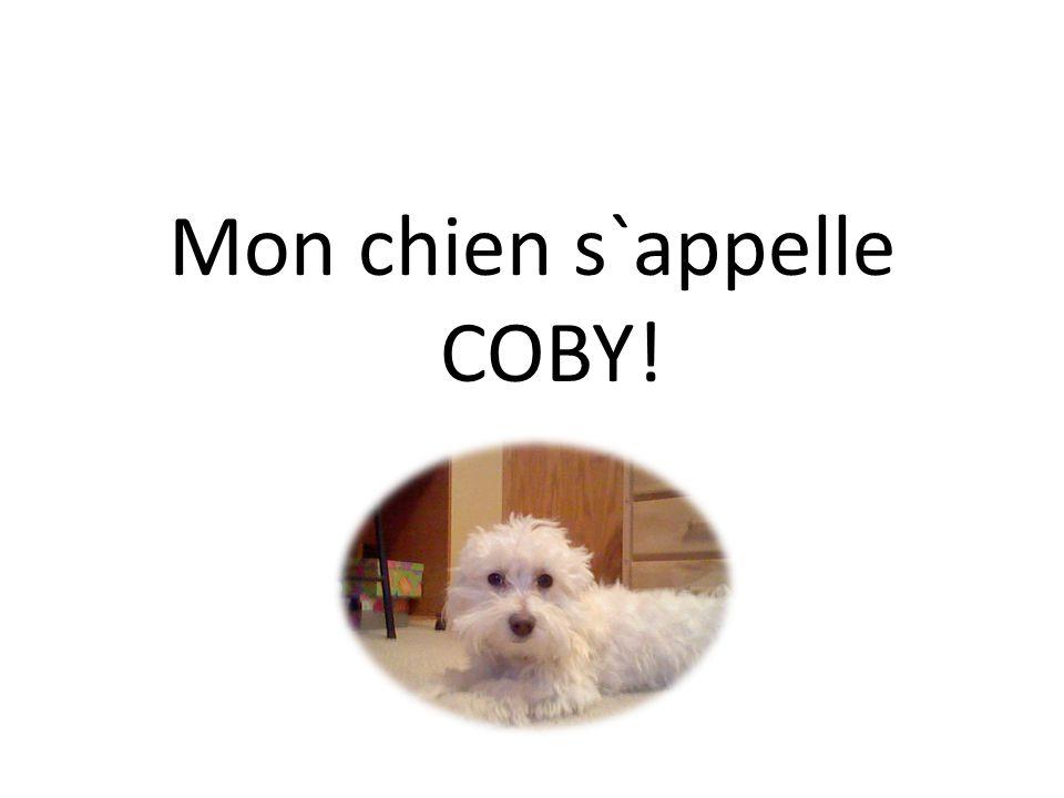 Mon chien s`appelle COBY!