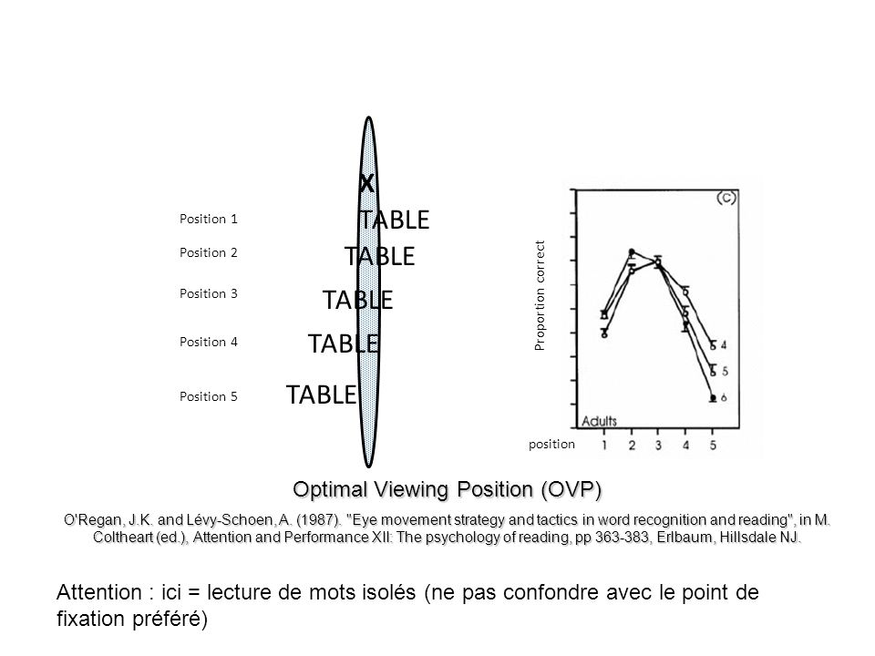 X TABLE Optimal Viewing Position (OVP) O'Regan, J.K. and Lévy-Schoen, A. (1987).