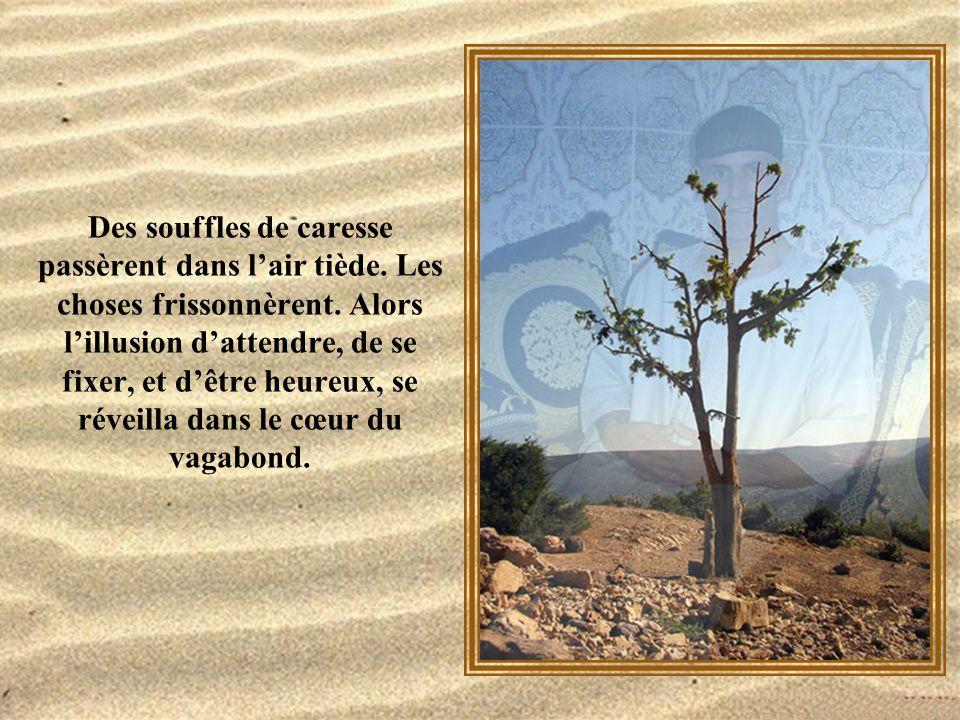Très vite, le jour s'éteignit, et le désert de pierre se noya en des transparences froides.