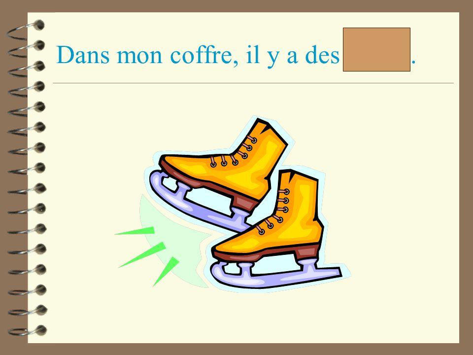 Dans mon coffre, il y a des patins.