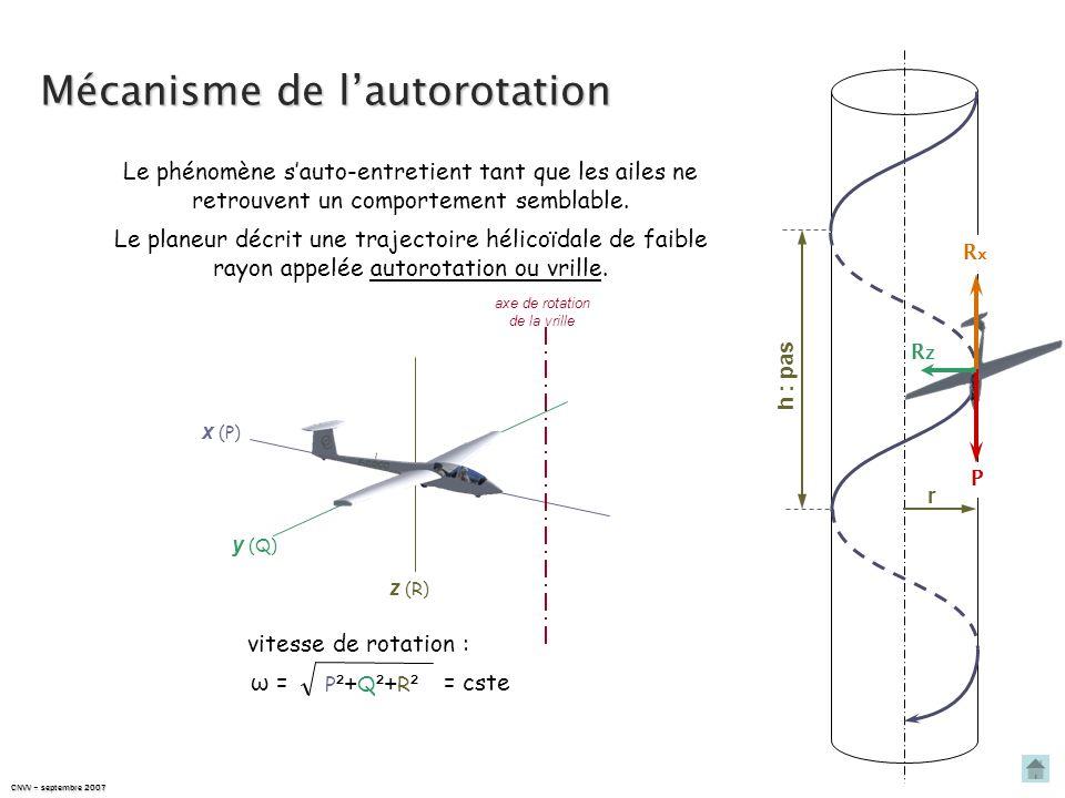 CNVV – septembre 2007 Mécanisme de l'autorotation En raison de la vitesse plus élevée de l'aile extérieure, rotation en lacet V aile qui s'enfonce V a