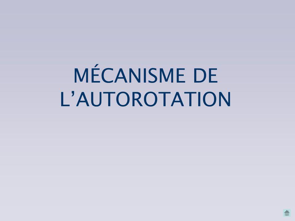 MÉCANISME DE L'AUTOROTATION MÉCANISME DE L'AUTOROTATION CONNAISSANCES INDISPENSABLES SITUATIONS À RISQUE SITUATIONS À RISQUE ORIGINE DE L'AUTOROTATION