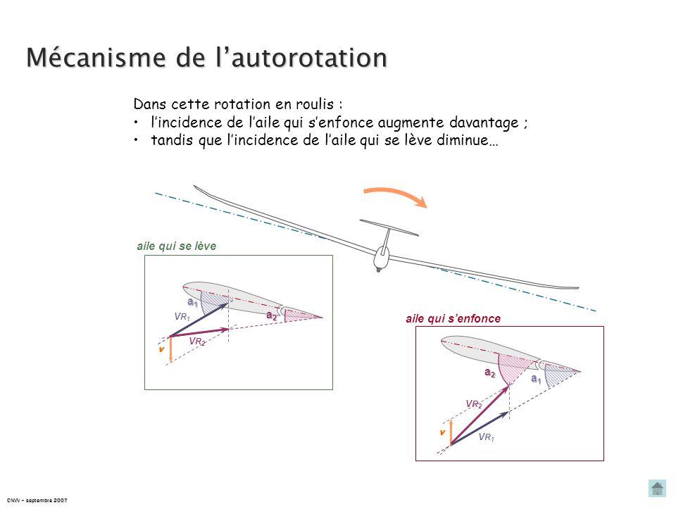 CNVV – septembre 2007 Mécanisme de l'autorotation Dans cette rotation en roulis : l'incidence de l'aile qui s'enfonce augmente davantage ; tandis que l'incidence de l'aile qui se lève diminue… aile qui s'enfonce aile qui se lève a1a1a1a1 a2a2a2a2 VR1VR1 VR2VR2 v a1a1a1a1 v VR1VR1 a2a2a2a2 VR2VR2