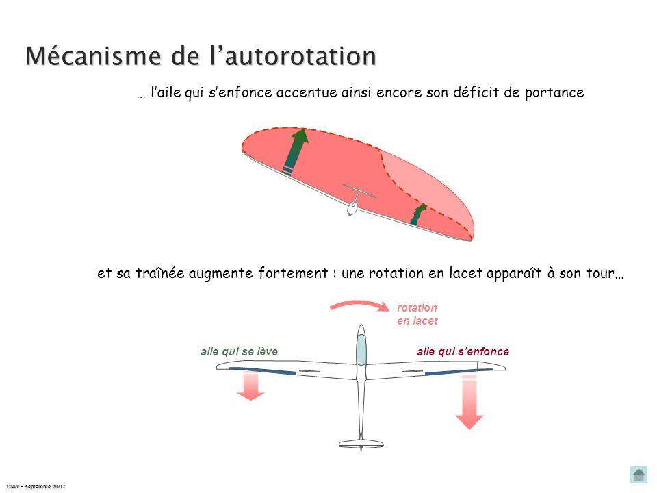 CNVV – septembre 2007 Mécanisme de l'autorotation … l'aile qui s'enfonce accentue ainsi encore son déficit de portance et sa traînée augmente fortement : une rotation en lacet apparaît à son tour… rotation en lacet aile qui s'enfonceaile qui se lève