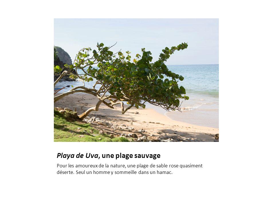 Playa de Uva, une plage sauvage Pour les amoureux de la nature, une plage de sable rose quasiment déserte.