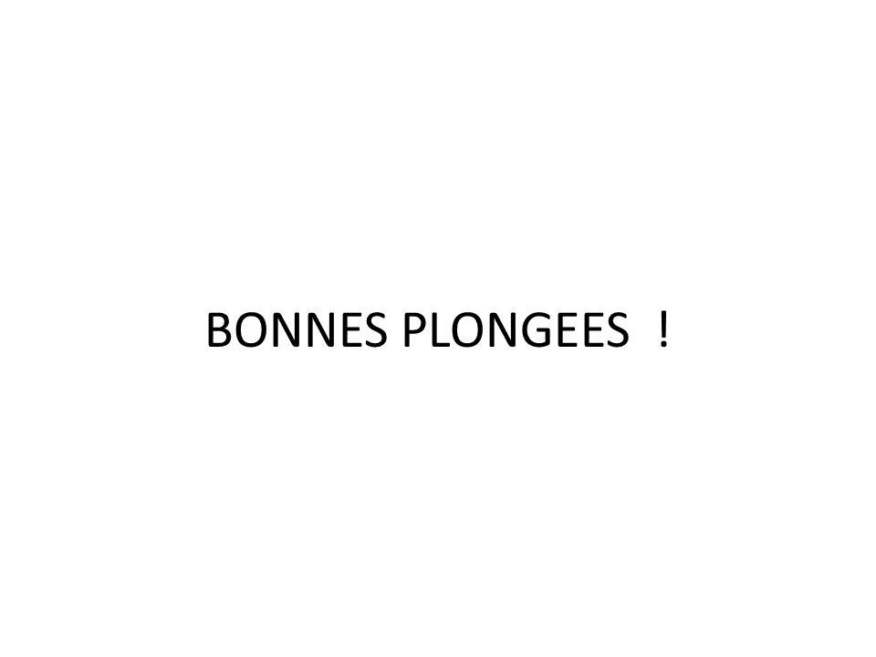 BONNES PLONGEES !