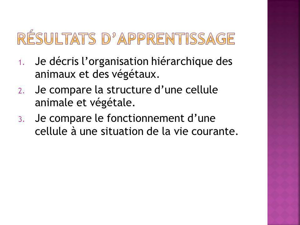 1. Je décris l'organisation hiérarchique des animaux et des végétaux. 2. Je compare la structure d'une cellule animale et végétale. 3. Je compare le f