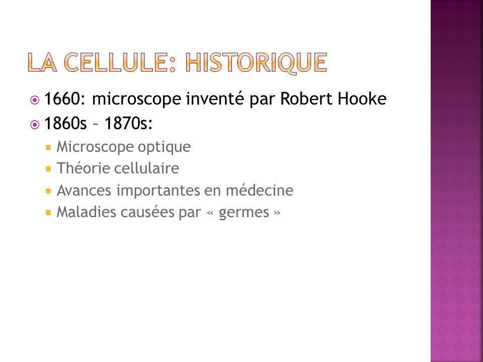  1660: microscope inventé par Robert Hooke  1860s – 1870s:  Microscope optique  Théorie cellulaire  Avances importantes en médecine  Maladies ca