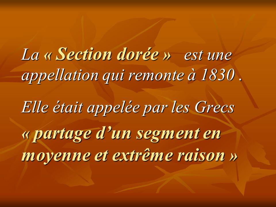 On désigne généralement le nombre d'or par la lettre grecque φ en hommage au sculpteur grec Phidias ( 490 à 430 avant J.C.
