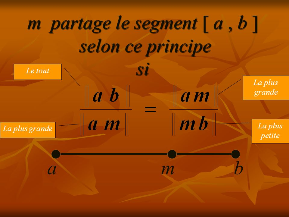 m partage le segment [ a, b ] selon ce principe si abm Le tout La plus grande