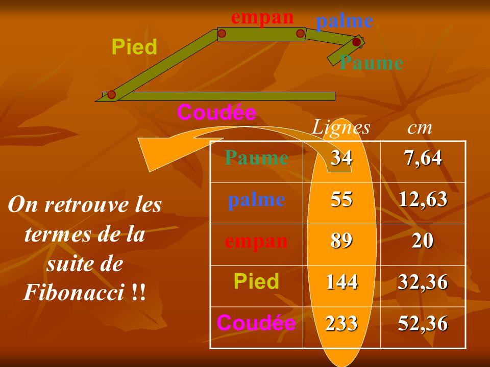 Coudée Pied empan palme Paume Les longueurs étaient données en « lignes » ( une ligne mesurant 2,247 mm ) 347,64 palme5512,63 empan8920 Pied14432,36 Coudée23352,36 Lignes cm