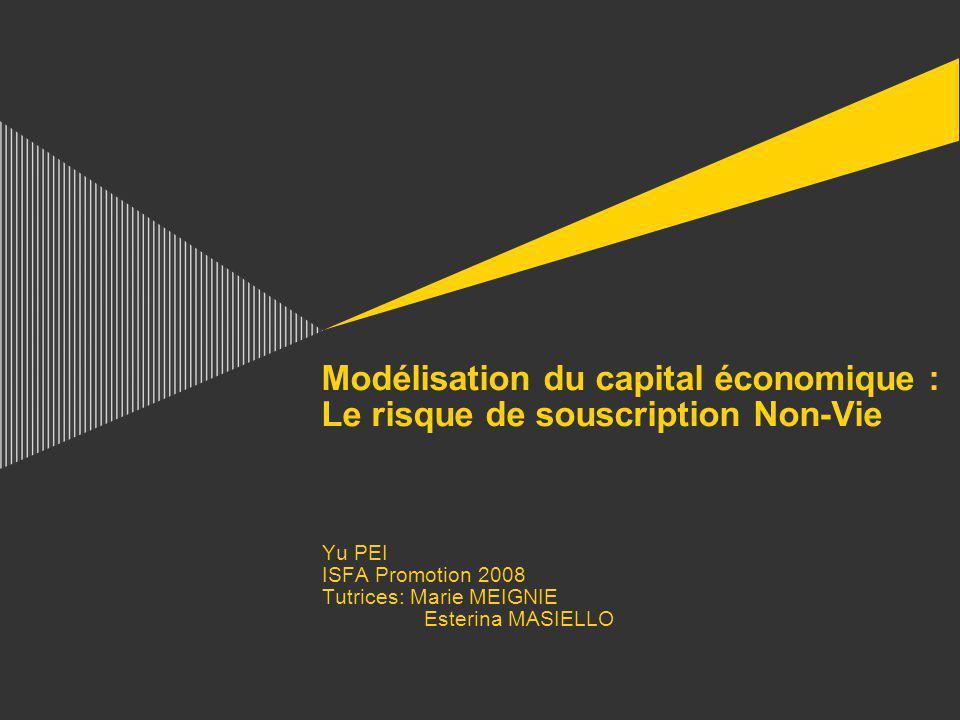 Modélisation du capital économique : Le risque de souscription Non-Vie Yu PEI ISFA Promotion 2008 Tutrices: Marie MEIGNIE Esterina MASIELLO