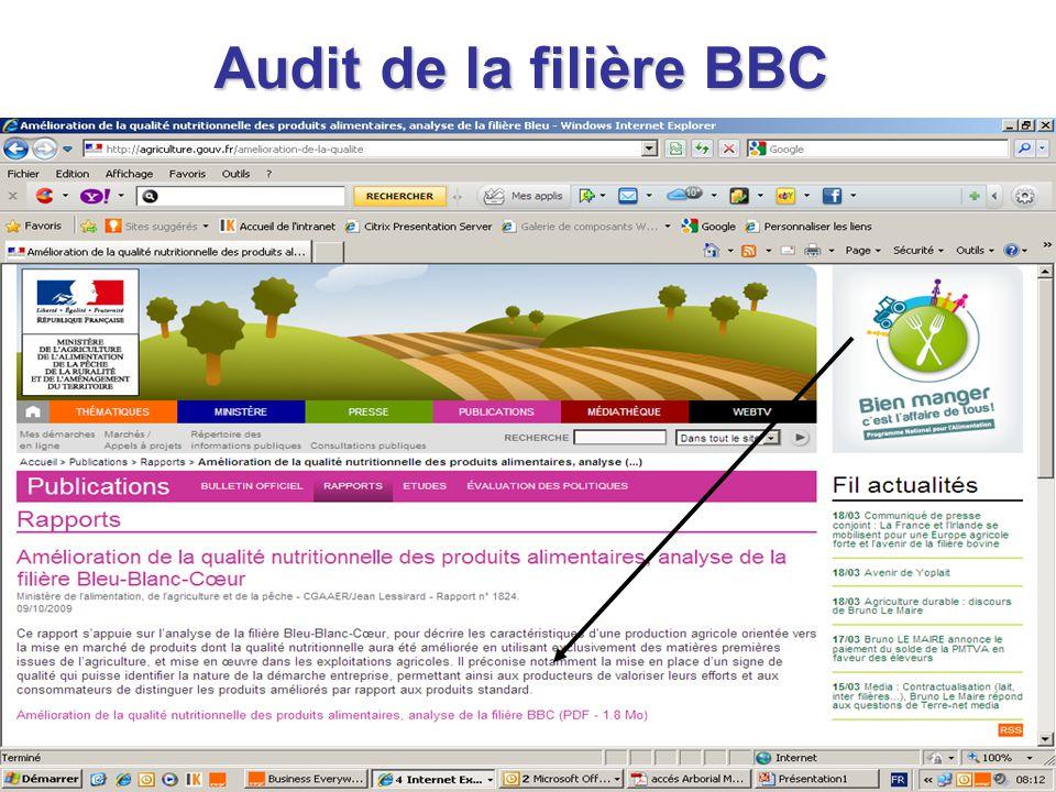 Audit de la filière BBC