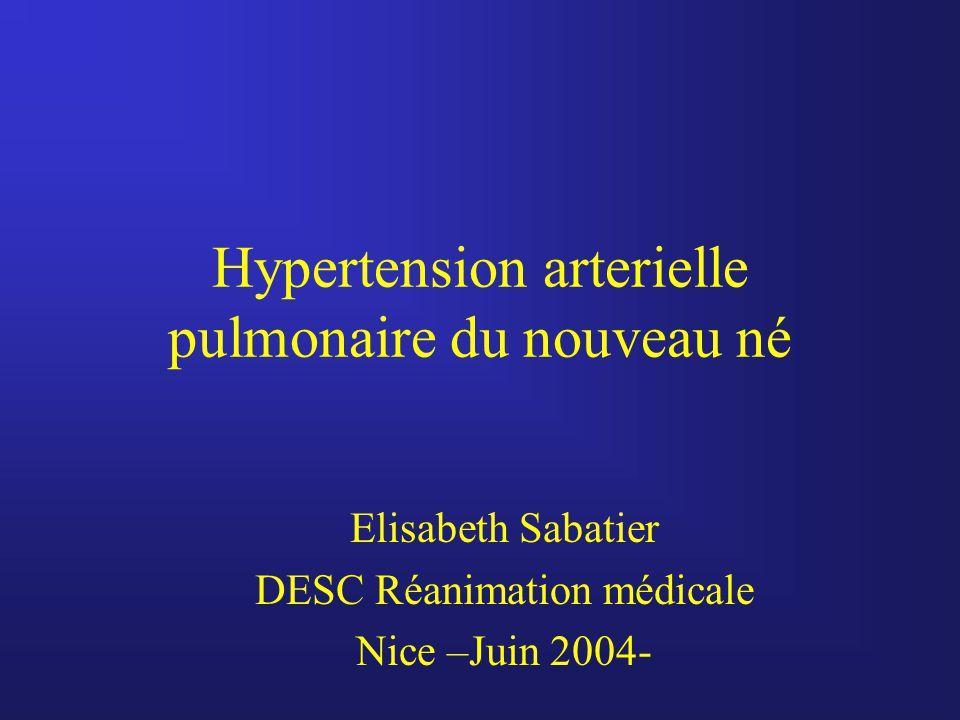 Hypertension arterielle pulmonaire du nouveau né Elisabeth Sabatier DESC Réanimation médicale Nice –Juin 2004-