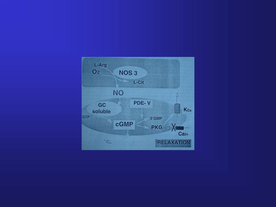 1-Aération 2-Oxygénation Pa02 3-Shear stress Baisse des résistances pulmonaires Augmentation des R periph Fermeture des shunts Dt- Gche Circulation fœtale en parallèle Circulation extrautérine en série Physiologie de l'adaptation à la vie extra utérine