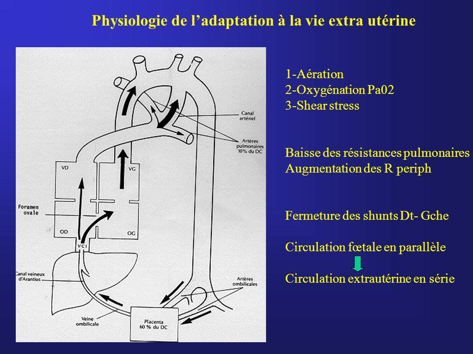 1-Aération 2-Oxygénation Pa02 3-Shear stress Baisse des résistances pulmonaires Augmentation des R periph Fermeture des shunts Dt- Gche Circulation fœ
