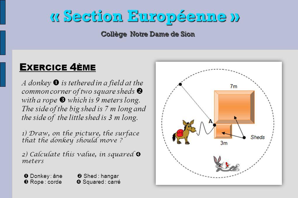 « Section Européenne » Collège Notre Dame de Sion 1) DNB : aucune mention n'existe aujourd'hui L ES E XAMENS EN CLASSE EUROPÉENNE 2) BAC : épreuve orale - 20mn (prestation sur exercice fait en classe) épreuve écrite – 1h (en fonction du bac préparé) 3) NOTE BAC : 10/20 minimum à l'épreuve orale 12/20 minimum à l'épreuve écrite 20% de la note est incluse dans le contrôle continu de Terminale 20% de la note est incluse dans le contrôle continu de Terminale Remarque : un élève peut obtenir le bac sans la mention Europe