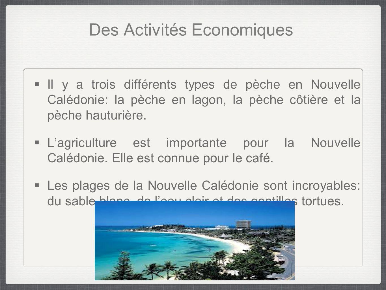 Des Activités Economiques  Il y a trois différents types de pèche en Nouvelle Calédonie: la pèche en lagon, la pèche côtière et la pèche hauturière.