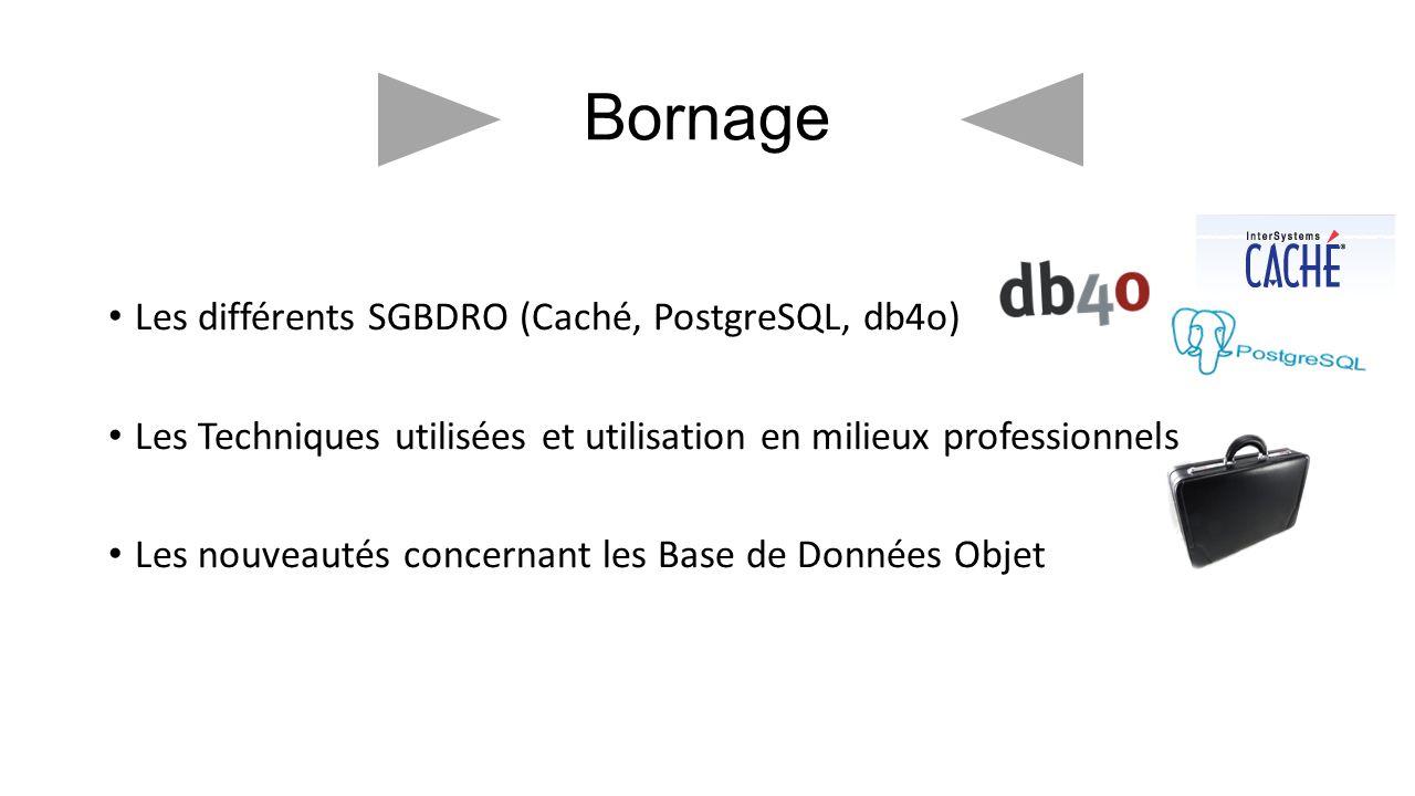 Bornage Les différents SGBDRO (Caché, PostgreSQL, db4o) Les Techniques utilisées et utilisation en milieux professionnels Les nouveautés concernant le