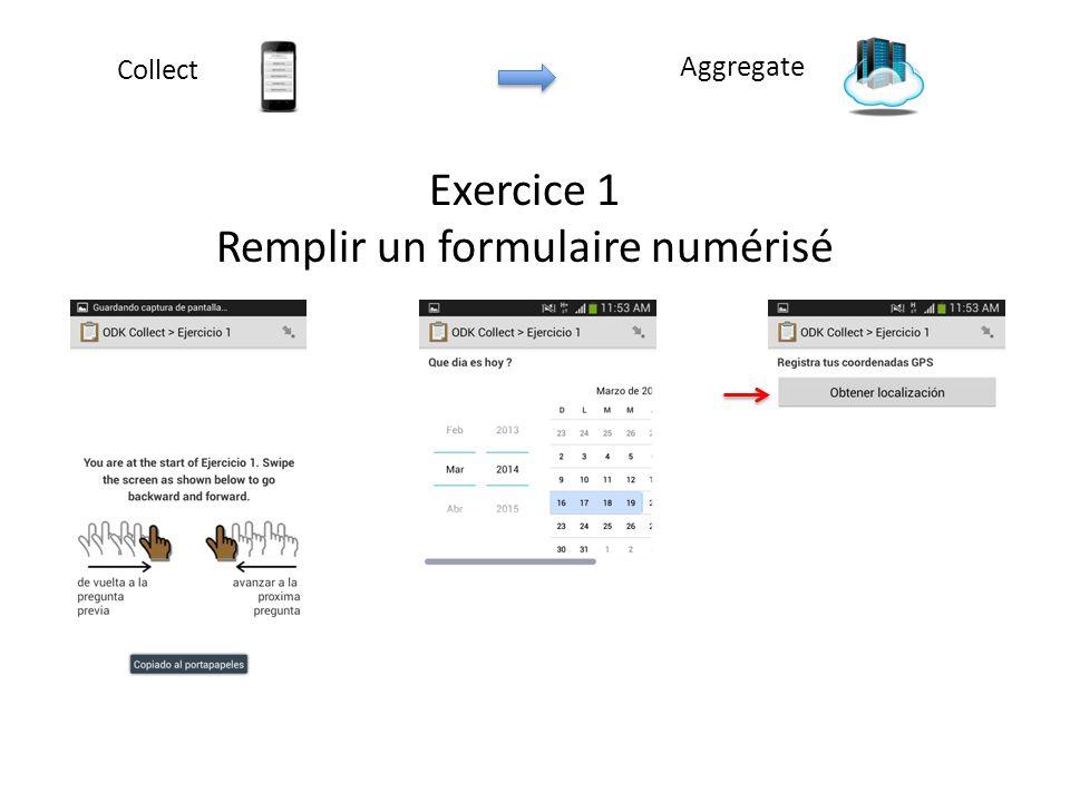 Exercice 1 Remplir un formulaire numérisé Aggregate Collect