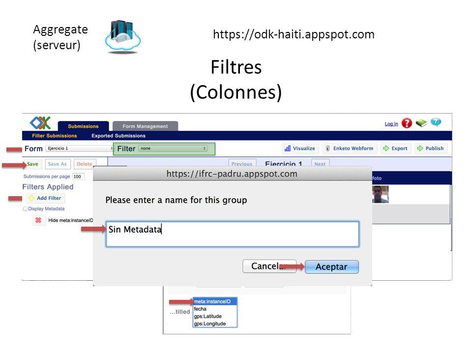 Aggregate (serveur) https://odk-haiti.appspot.com Filtres (Colonnes)