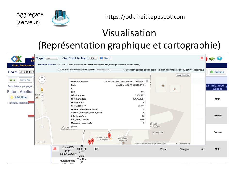 Aggregate (serveur) https://odk-haiti.appspot.com Visualisation (Représentation graphique et cartographie)