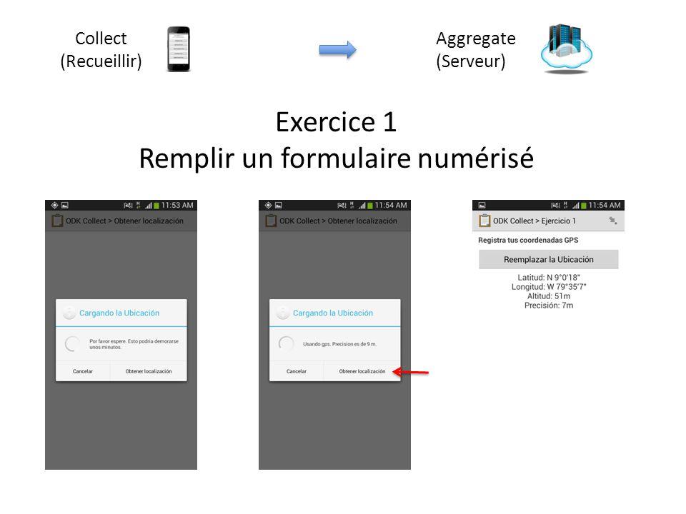 Exercice 1 Remplir un formulaire numérisé Aggregate (Serveur) Collect (Recueillir)