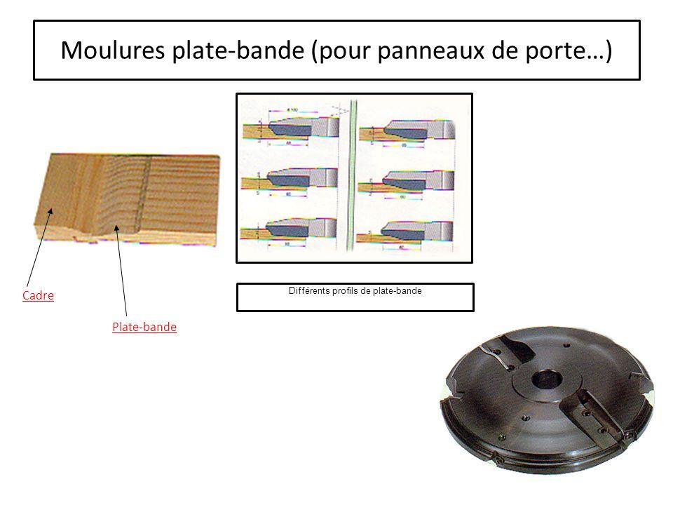 Moulures contre-profil (utilisation sur tenonneuse…) Contre-profil (doucine à baguette) Tenon Couteaux interchangeables Porte outils (plateaux à tenonner).