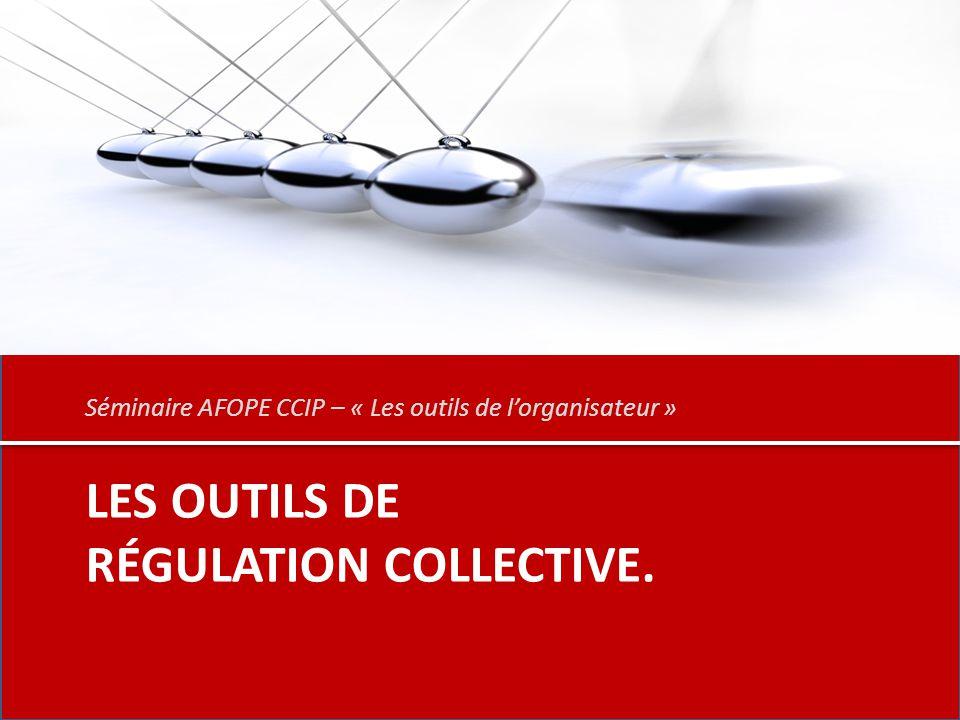 LES OUTILS DE RÉGULATION COLLECTIVE. Séminaire AFOPE CCIP – « Les outils de l'organisateur »