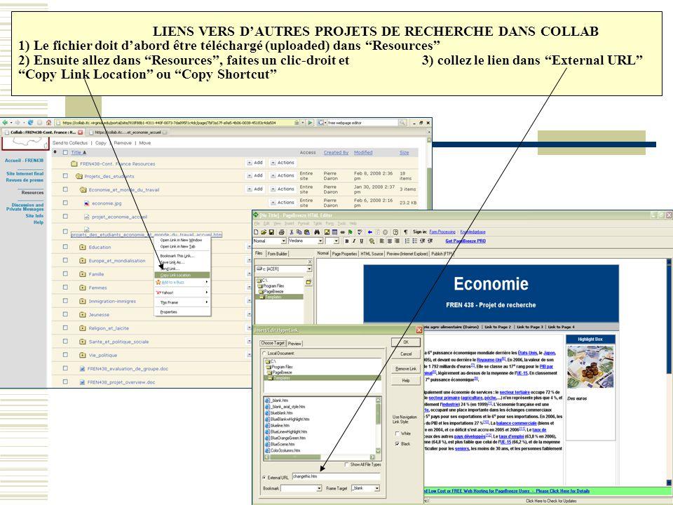 """LIENS VERS D'AUTRES PROJETS DE RECHERCHE DANS COLLAB 1) Le fichier doit d'abord être téléchargé (uploaded) dans """"Resources"""" 2) Ensuite allez dans """"Res"""