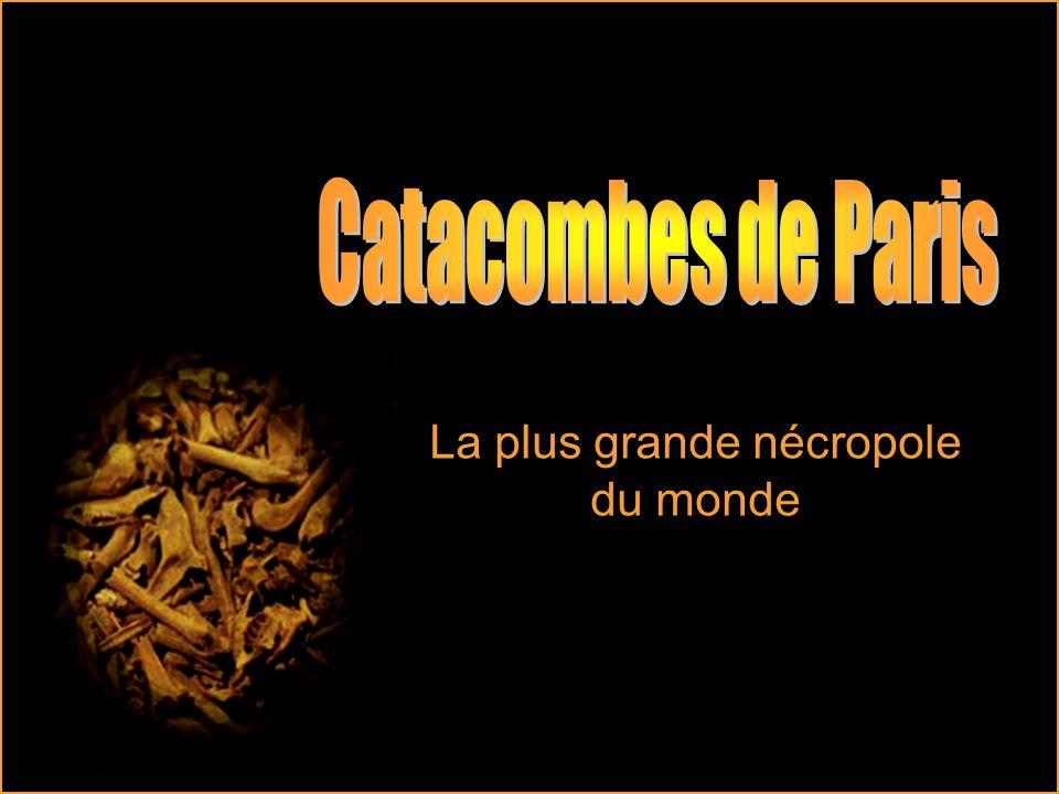 Carrières de Charenton Au Sud-Est de Paris, les carrières de Charenton présentent un petit réseau de galeries en bon état.
