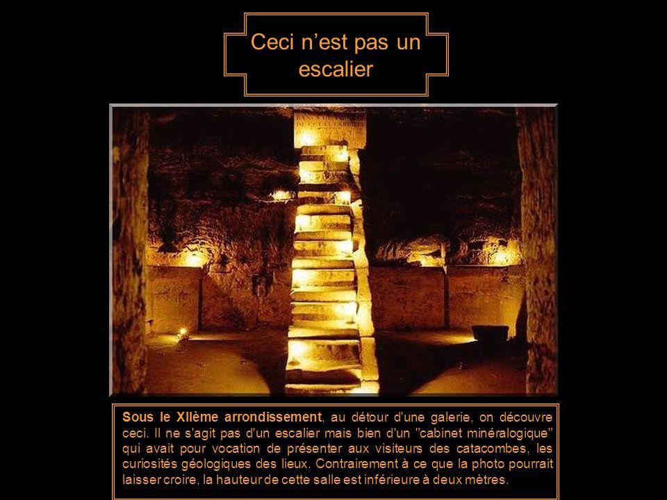 Avec l'essor de la ville de Paris vers les XIIe et XIIIe siècles, la demande de matériaux de construction se fait de plus en plus grande. Pour préserv