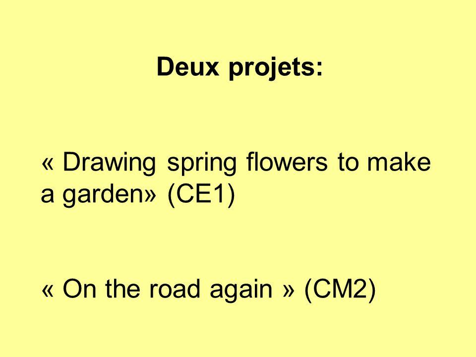 Drawing spring flowers to make a garden: -Un projet proposé sur le forum par une enseignante espagnole et une finlandaise.