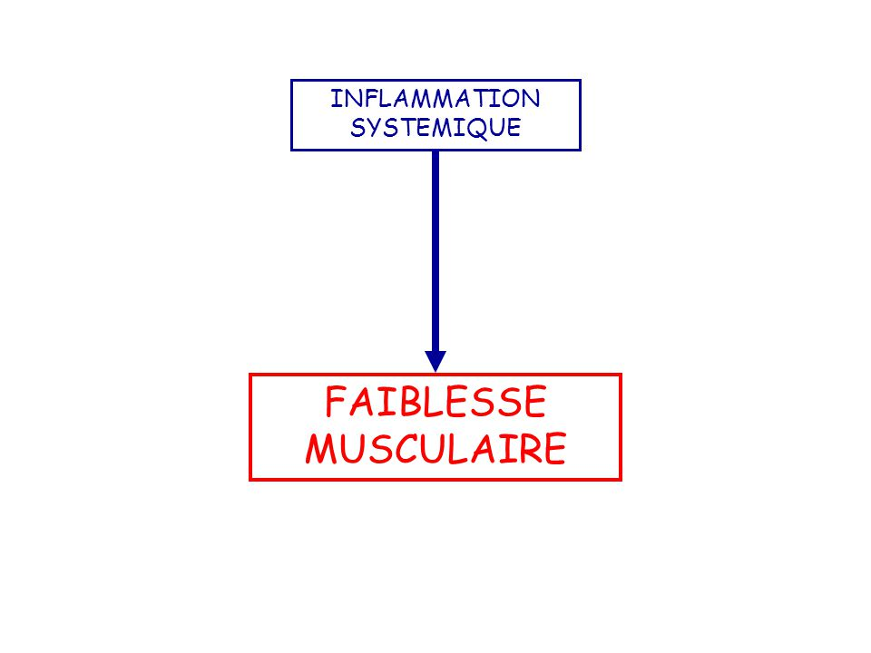 FAIBLESSE MUSCULAIRE INFLAMMATION SYSTEMIQUE