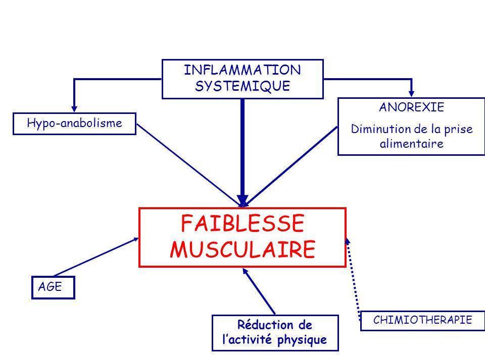 FAIBLESSE MUSCULAIRE INFLAMMATION SYSTEMIQUE ANOREXIE Diminution de la prise alimentaire Réduction de l'activité physique CHIMIOTHERAPIE AGE Hypo-anab