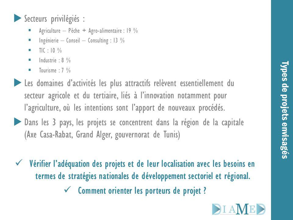 Types de projets envisagés  Secteurs privilégiés :  Agriculture – Pêche + Agro-alimentaire : 19 %  Ingénierie – Conseil – Consulting : 13 %  TIC :