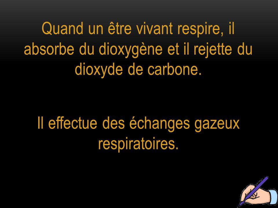 Quand un être vivant respire, il absorbe du dioxygène et il rejette du dioxyde de carbone. Il effectue des échanges gazeux respiratoires.