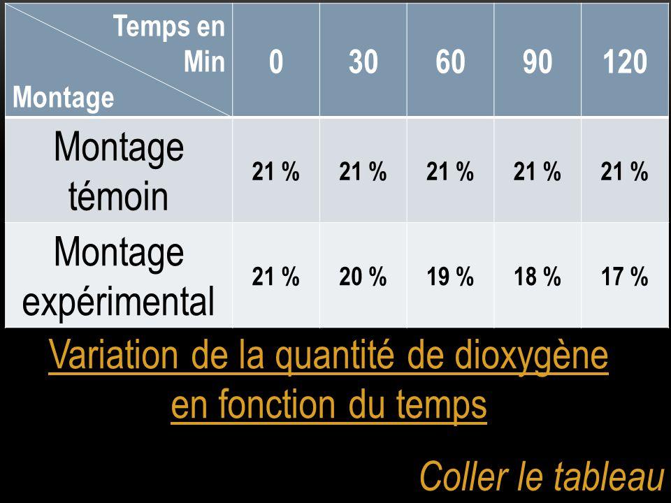 Variation de la quantité de dioxygène en fonction du temps Temps en Min Montage 0306090120 Montage témoin 21 % Montage expérimental 21 %20 %19 %18 %17 % Coller le tableau