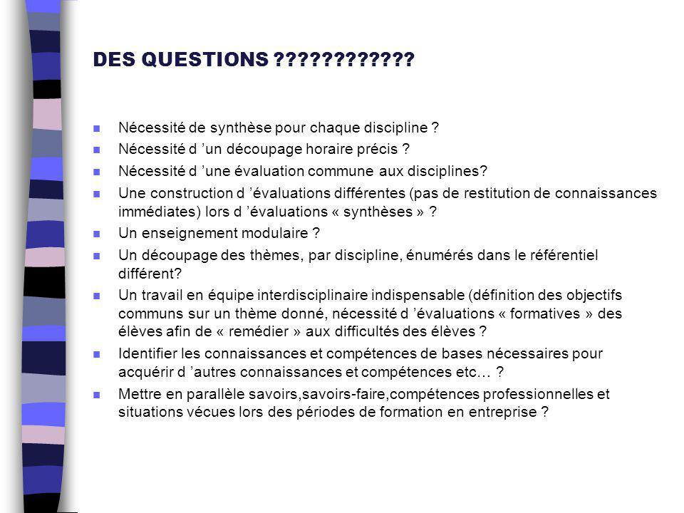 DES QUESTIONS ???????????? n Nécessité de synthèse pour chaque discipline ? n Nécessité d 'un découpage horaire précis ? n Nécessité d 'une évaluation