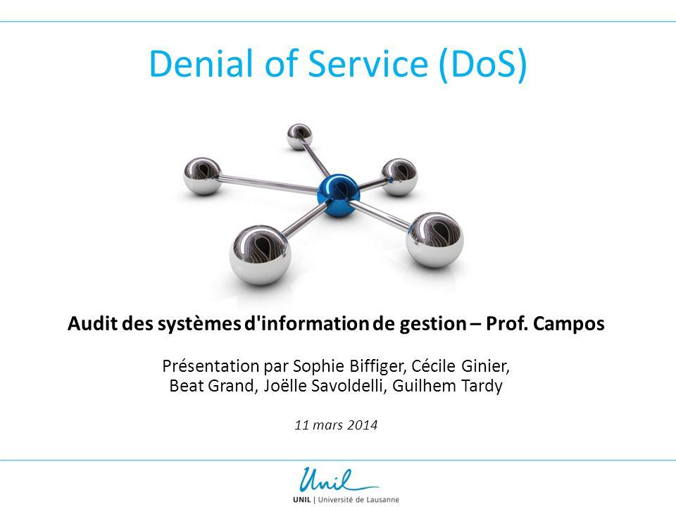 Denial of Service (DoS) Audit des systèmes d'information de gestion – Prof. Campos Présentation par Sophie Biffiger, Cécile Ginier, Beat Grand, Joëlle