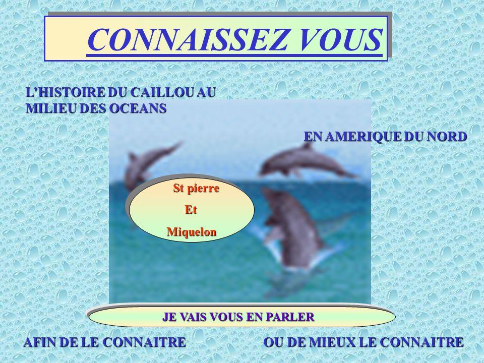 CONNAISSEZ VOUS L'HISTOIRE DU CAILLOU AU MILIEU DES OCEANS AFIN DE LE CONNAITRE AFIN DE LE CONNAITRE OU DE MIEUX LE CONNAITRE EN AMERIQUE DU NORD St pierre Et Miquelon JE VAIS VOUS EN PARLER JE VAIS VOUS EN PARLER
