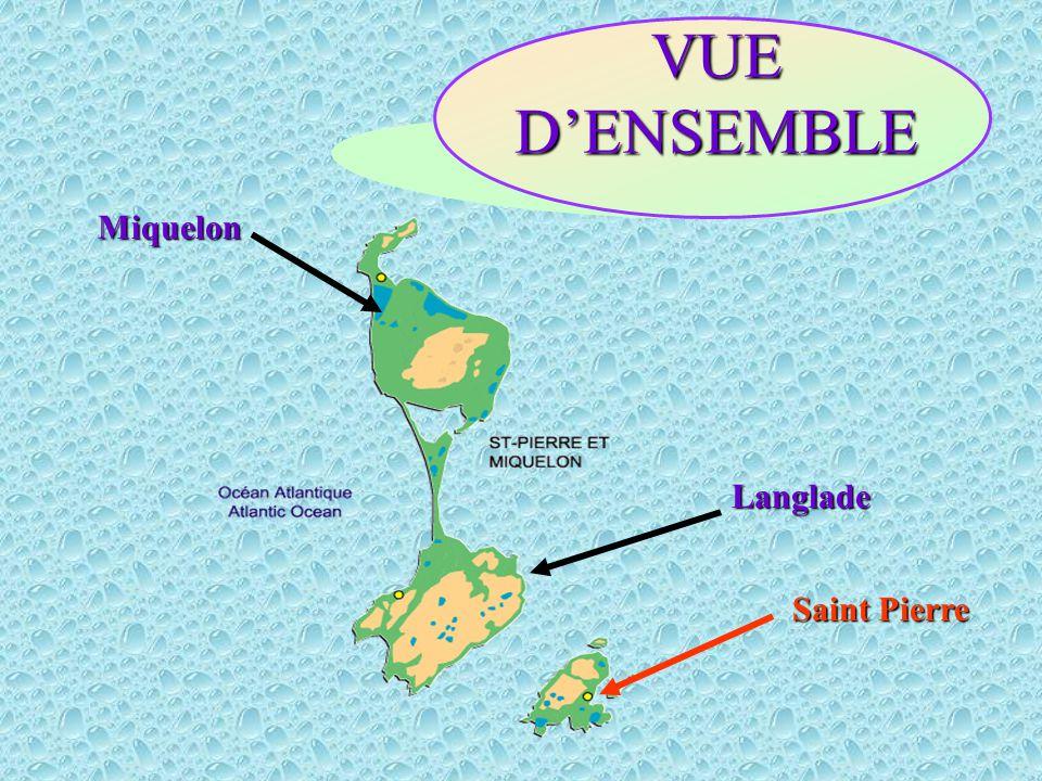 Langlade Miquelon Saint Pierre VUE D'ENSEMBLE