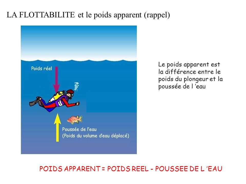 LA FLOTTABILITE et le poids apparent (rappel) Le poids apparent est la différence entre le poids du plongeur et la poussée de l 'eau POIDS APPARENT =