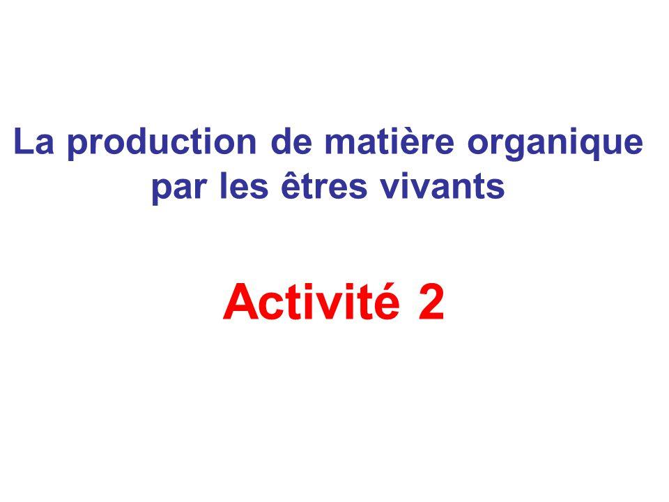 La production de matière organique par les êtres vivants Activité 2